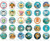 30 Precut Images Octonauts Set 1