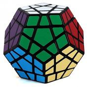 Dodecahedron 12 Colours Megamix Magic Rubik Cube Speed Twist Puzzle