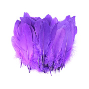 Celine lin 100PCS Dyed Home Decor Goose Feather For Art,Home Party or Wedding 15cm - 20cm , Purple