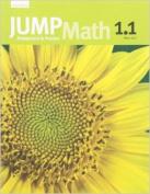 Jump Math CC AP Book K.1