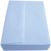 Leader Paper Products Leader A6 Peggable Envelopes (50 Pack), 12cm by 17cm , White