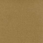 Worldwin Kraft Cardstock, 30cm by 30cm , 25-Pack