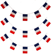 33FT FRENCH FLAG 20 FLAGS 10 metres BUNTING PARTY DECORATION ALL WEATHER BUNTING BASTILLE DAY FRANCE EVENT BANNER