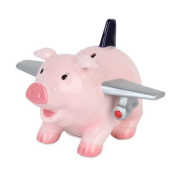 PTC Ceramic Aeroplane Pig Savings Piggy/Coin/Money Bank, 17cm L