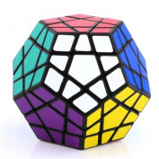 Asunflower 12 Colour Megaminx Magic Cube Rubik's Puzzle Twist Professional High Speed Toy