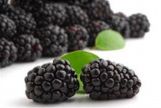 Black Raspberry Seed Oil - Organic Natural Pure Cold Pressed 3.8l Extra Virgin Unrefined Hair Skin Face Body Premium Grade