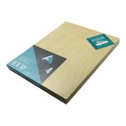 Aa Super Value Wood Panel 5Mm 9X12 Pk/4