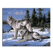 Rihe Paint By Numbers Kits Mounted on Wood Frame with Brushes and Paints for Adults Children Seniors Junior DIY Beginner Level Acrylics Painting Kits on Canvas-Animal Theme 16*50cm Wolf