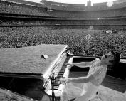 Elton John / Piano Man 8 x 10 GLOSSY Photo Picture IMAGE #3