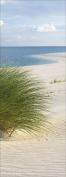 "Pro-Art gla661c Glass Art Wall Picture 30 x 80 cm ""Sand Sedge I"""