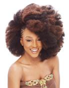 Janet Collection Noir 2X Afro Kinky Bulk 60cm 4 pack