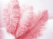 12 Fabulous Ostrich Feathers - Pink