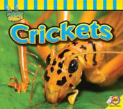 Crickets (Fascinating Insects)