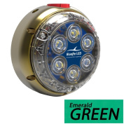 Bluefin LED DL12I-SM-G129 Industrial Dock Light, Emerald Green