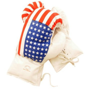 AGE 6-8 KIDS 180ml BOXING GLOVES YOUTH practise TRAINING MMA American USA Flag