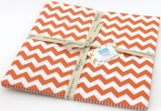 Riley Blake BASICS VARIETY Orange 25cm Stackers Layer Cake 24 Squares Quilt Fabric 10-60-24