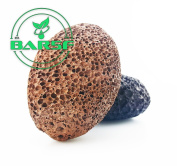 Premium Natural Lava Pumice Stone - Best Exfoliation and Pedicures - Callus Removal - Best Pumice Stone for Healthy and Smooth Hands and Feet