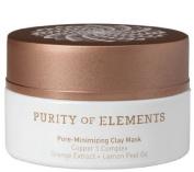 Purity of Elements Pore Minimising Clay Mask, Pore-Minimising Clay Mask Copper 5 ComplexTM Orange Extract Lemon Peel Oil .980ml