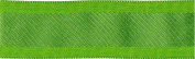Solid Wired Ribbon W/Woven Centre 2.5cm - 1.3cm X25yd-Parrot Green