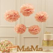 Sorive® Peach Tissue Paper Pom Poms Party & Wedding Decorations - Pastel Perfection