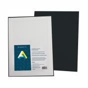 Aa Super Value Canvas Panel Black 9X12 Pk/5