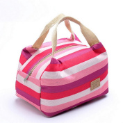 Bluester Picnic Insulated Food Storage Zipper Box Tote Bento Pouch Lunch Bag