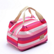 Internet Lunch Bag Picnic Insulated Food Storage Lunch Box Tote Bento Pouch