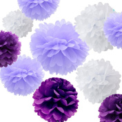 Sorive® 12pcs Premium Tissue Paper Pom Pom Flowers Craft Kit - Rustic Purple and White