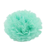 Sorive® ® Pack of 5 25cm and 36cm MINT Tissue Paper Pom Poms Flower Ball Wedding Bridal Shower Party Decoration SRI01877