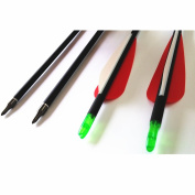 Hunting Baby Archery Carbon Arrows 400 Spine With Replaceable broadheads For Compound Bow 6 Pack
