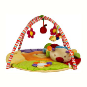 MLSH Charming 3-in-1 Musical Activity Kick and Play Piano Gym , sun flower caterpillar