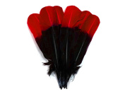 Turkey Feathers, 0.1kg Turquoise Red and Black Two Tone Turkey Rounds Tom Wing Quill Secondary Feathers