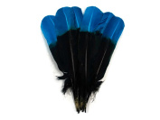 Turkey Feathers, 0.1kg Turquoise Blue and Black Two Tone Turkey Rounds Tom Wing Quill Secondary Feathers