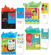 All Occasion Party Gift Bags - Set of 4 Large Gift Bags With Birthday Cards, Tags & Tissue Paper