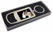 A Beautiful Brindle Bull Terrier Chrome Metal Bottle Opener Keyring in Box Gift