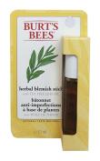 Burts Bees Herbal Blemish Stick
