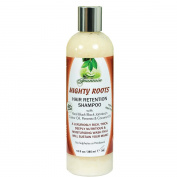 Fountain MIGHTY ROOTS Hair Retention Shampoo 380ml