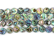 """12mm Natural Abalone Shell Flat Coin Beads Strand 16"""" Jewellery Making Beads"""
