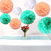 Somnr® Set of 6 Mixed Pastel Colour White Peach Mint Wedding Flower DIY Tissue Paper Pom Poms Birthday Party Girl Room Hanging Decoration by Somnr