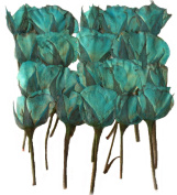 Pressed flowers, blue rose 40 pieces