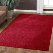 Mainstays Manchester Shag Rug 2.1mx3m,Autumn Red
