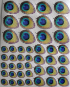 Edible Wafer Peacock Feathers ~ Assorted Design 2 Sizes BUY TWO GET THIRD FREE!