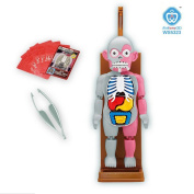 Horrible Simulation Manikin Mannequin Human Body Model Anthropotomy Game Puzzle Tricky Learning Educational Toy