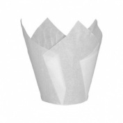 Bakery direct 200 White tulip muffin wraps