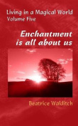 Enchantment is All About Us