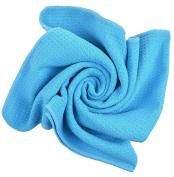 Sinland Microfiber Towels Lightweight Antibacterial Hair Drying Towels Travel Towel Bath Towel 20Inchx40Inch