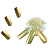 AutumnFall 1g/ Box Gold Sliver Nail Glitter Powder Shinning Nail Mirror Powder Makeup Art DIY Chrome Pigment