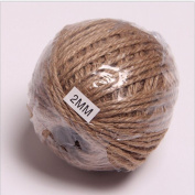 OZXCHIXU(TM) 100M Natural Jute Twine String Rope 2mm Craft Wedding Gift Tags Wrap Decor Ornament