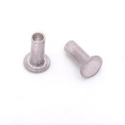 0.2cm Dia. 0.4cm Long Aluminium Rivet
