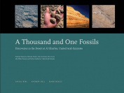 A Thousand and One Fossils